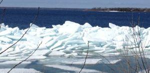 icefloes