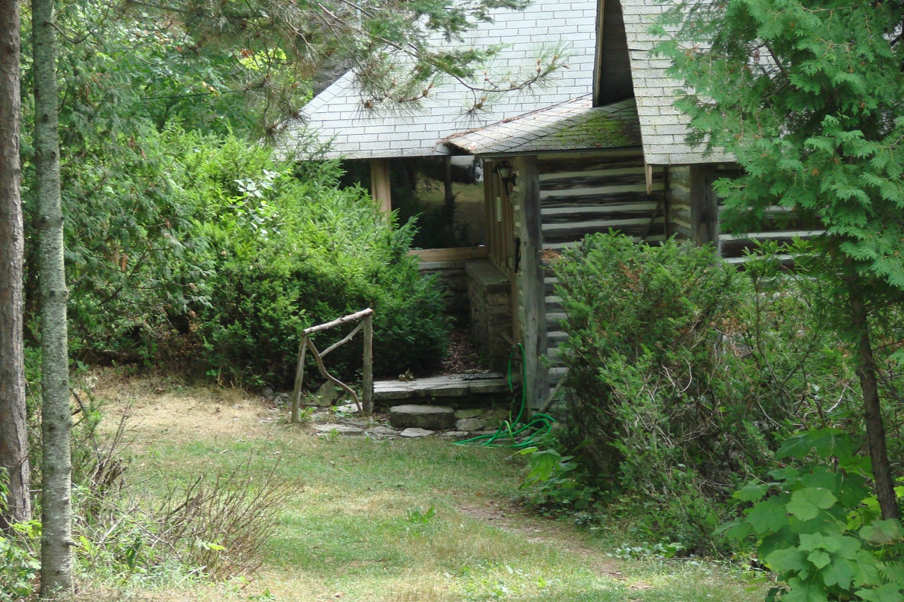 """my grandparents cabin Something happened in my grandparents cabin creepy story from reddit i'd like to thank user: """"jaygriffin"""" from the /nosleep sub reddit for allowing me to read this story."""